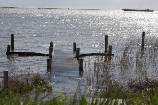 verdronken landschap1