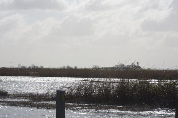 verdronken landschap6
